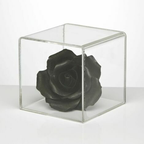 Clear Acrylic Five Sided Display Cube w/Lid